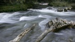 Oconaluftee River, Smokey Mountains 2